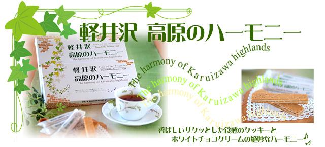 軽井沢 高原のハーモニー
